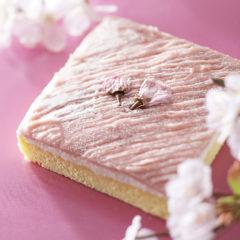 春の香り~さくらのケーキ~